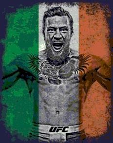 دانلود اسپری UFC برای کانتر 1.6